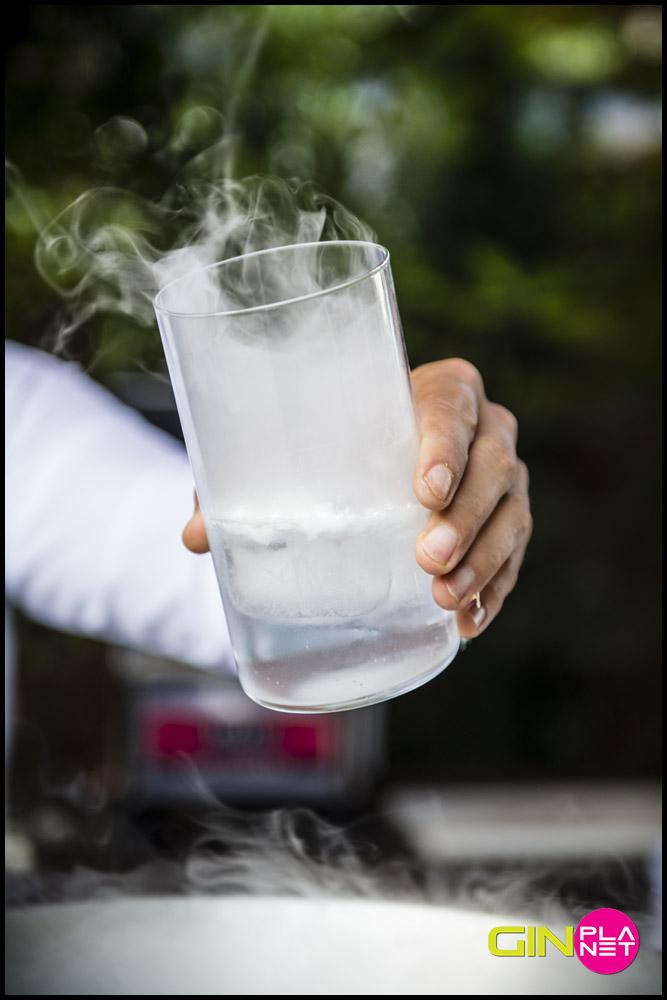 Gin Planet 2015 vaso