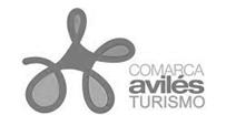 Logo Comarca de Avilés
